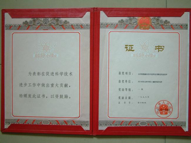 1998省科技进步奖一等.jpg